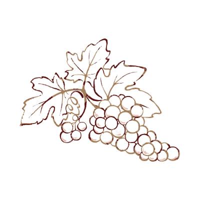 disegni_uva